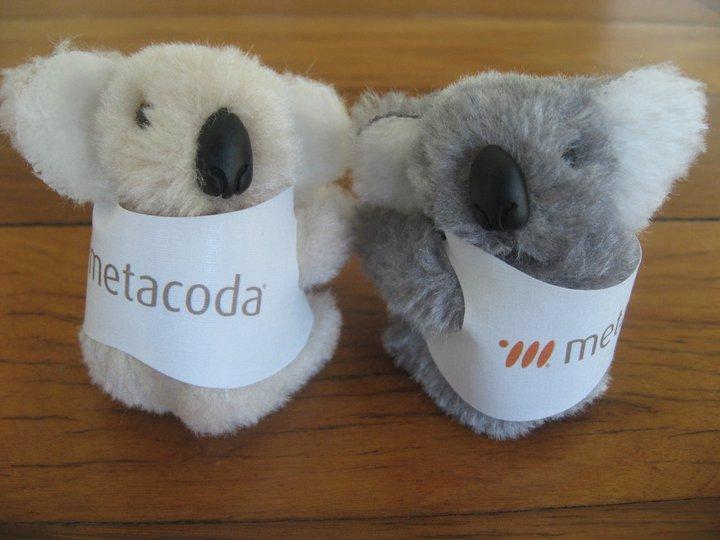Metacoda Koala
