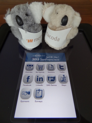 Metacoda Koalas getting SASGF13 agenda ready