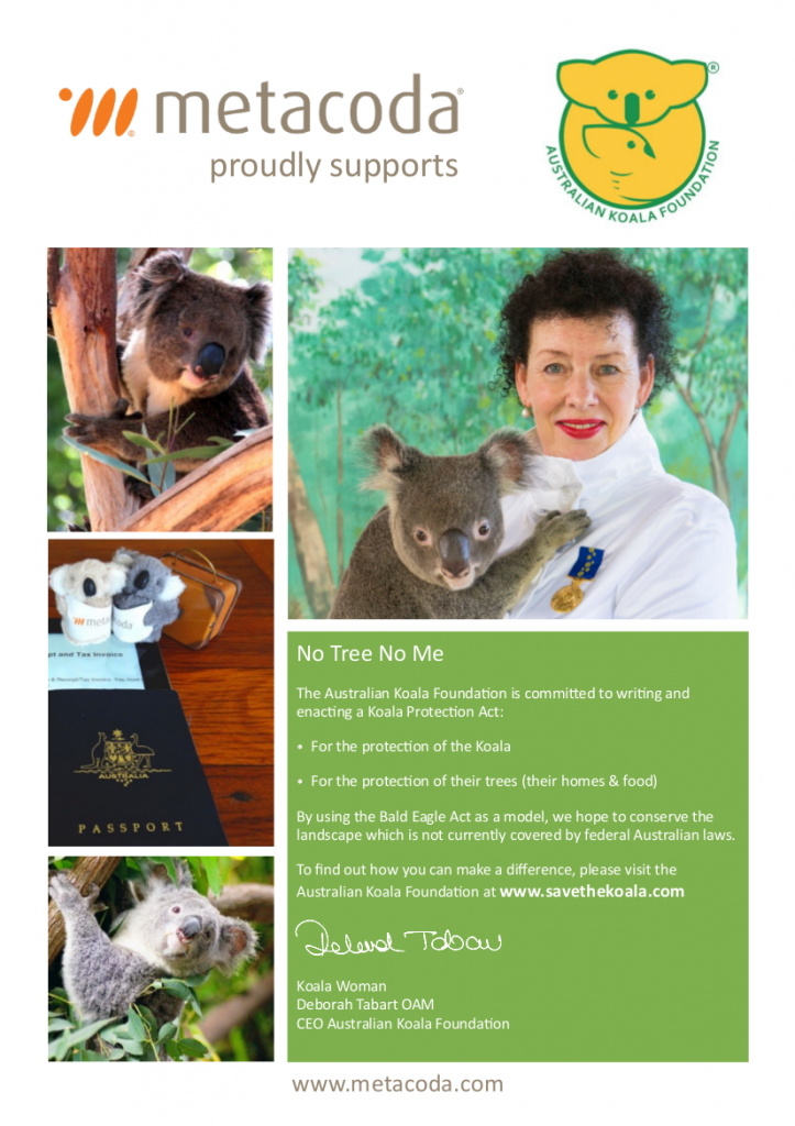 Metacoda supporting Australian Koala Foundation