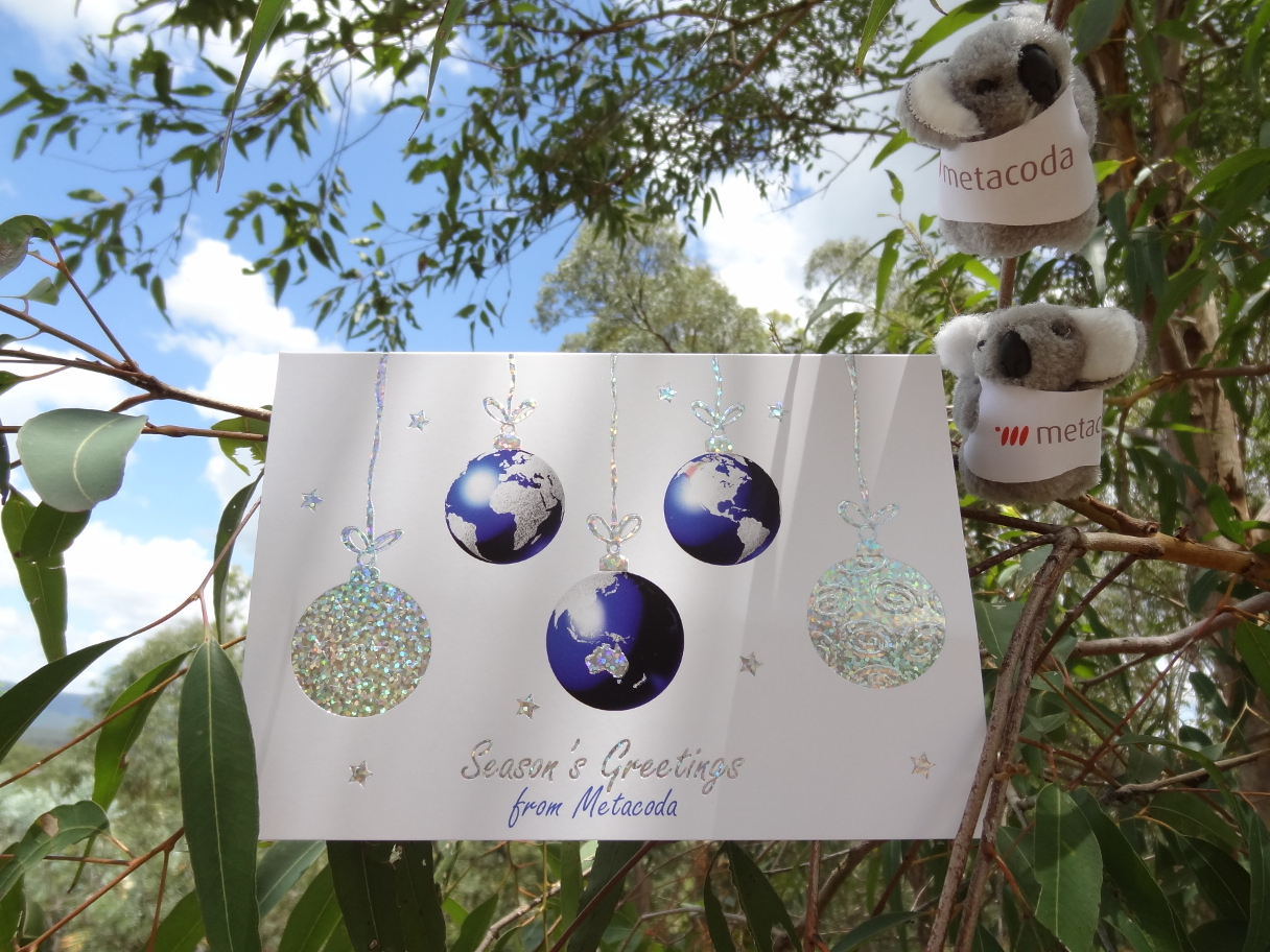 Metacoda Koalas Seasons Greetings and Thanks