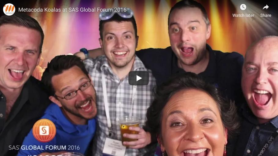 SASGF 2016 Metacoda Koala video