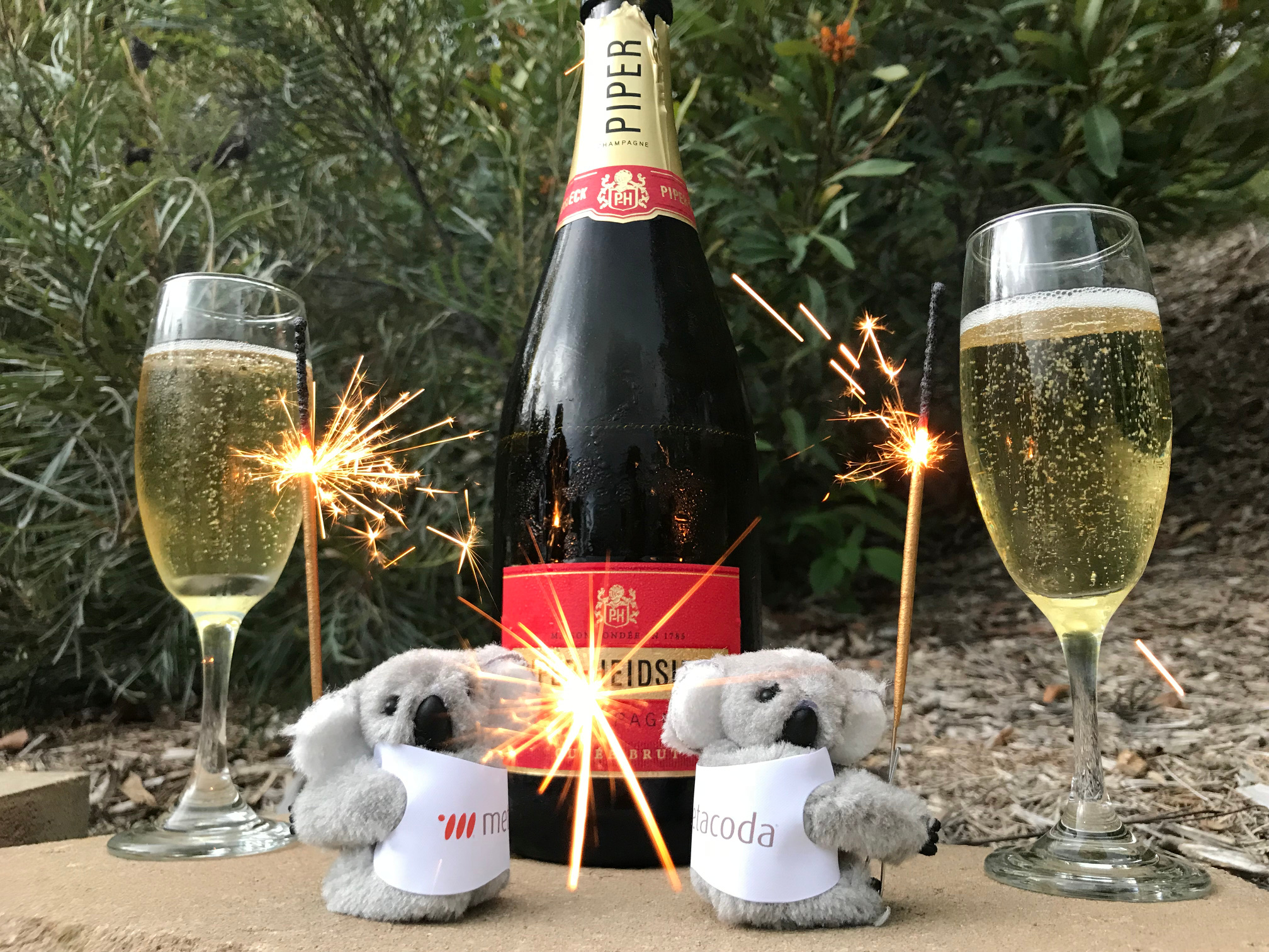 Metacoda Koalas celebrate the new year, 2018