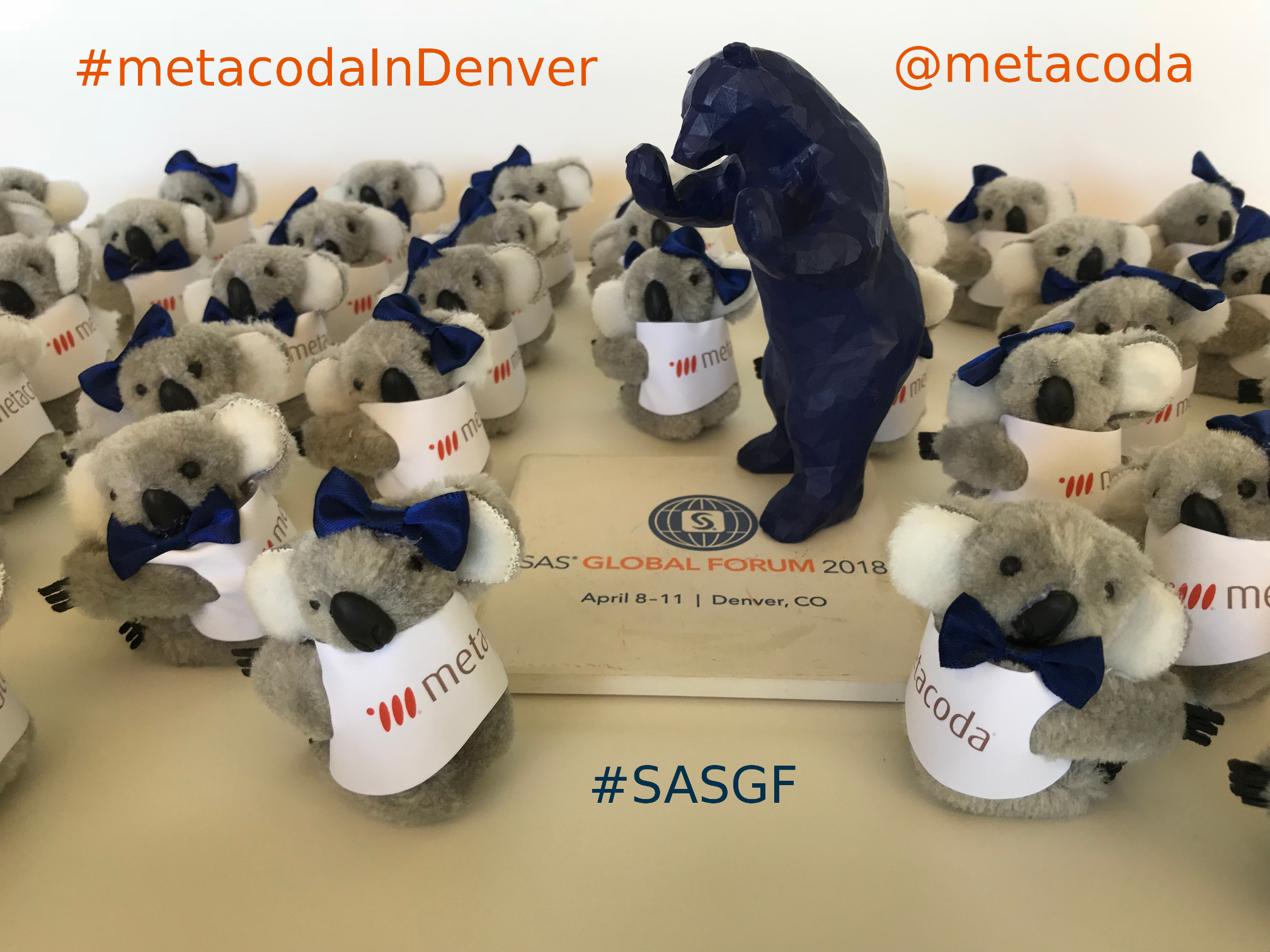 Metacoda Koalas with Blue Bear #metacodaInDenver