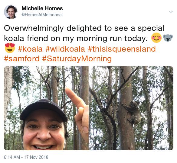 Michelle tweet - wild koala