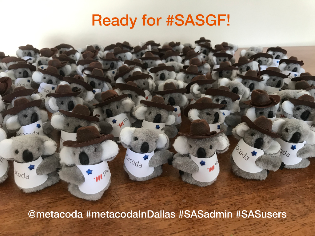 Metacoda Koalas: Ready for #SASGF!