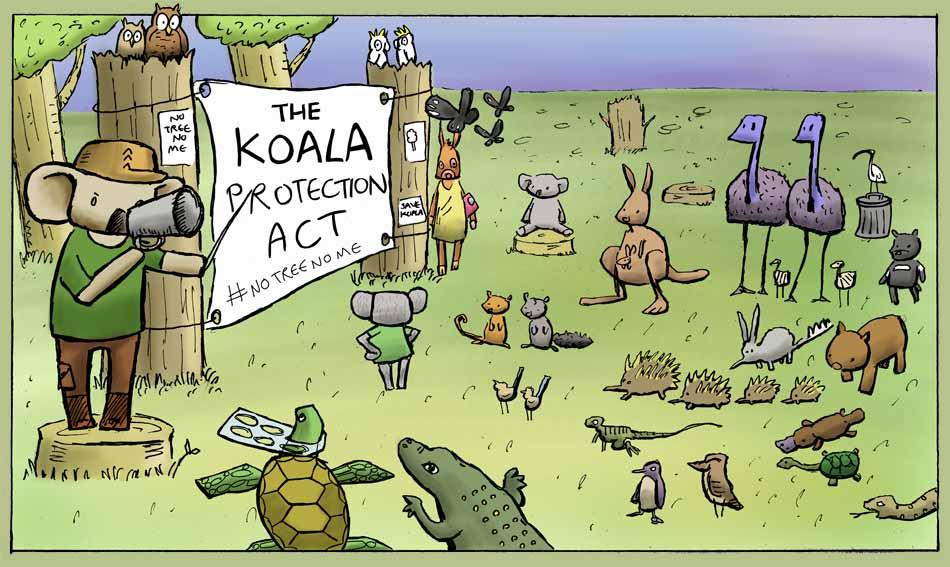 Koala Protection Act #NoTreeNoMe