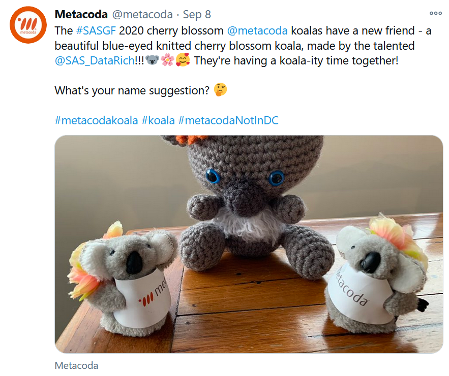 Metacoda Koalas with their friend Blossom